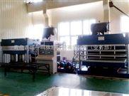 双联式橡胶硫化机,液压式硫化机